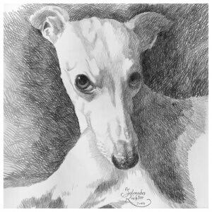 Anukis, Drawing