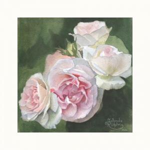 'Rose Eden' | Aquarell auf Papier